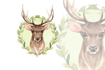 Noble Deer