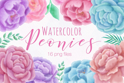 Watercolor Peony Flower Illustration