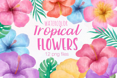 Tropical Flower Watercolor Flower Illustrations