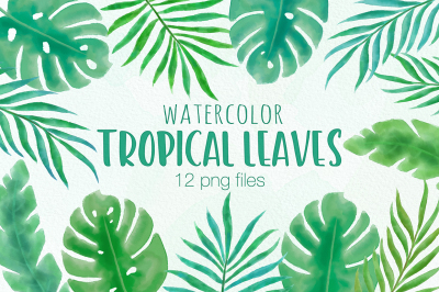 Tropical Leaves Watercolor Clipart Illustrations