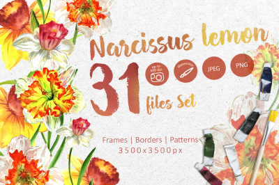 Narcissus lemon PNG watercolor flower set