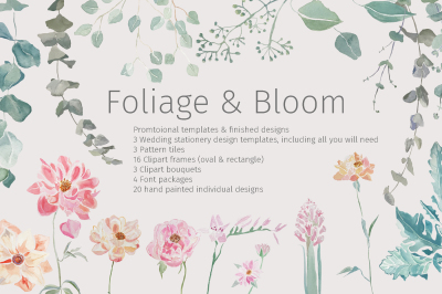 Foliage & Bloom Pack
