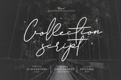 10 Font Script Collection + doodlee art