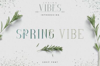 [Spring Vibes] SpringVibe Serif Font -30%