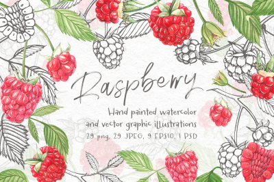 Raspberry.Graphic&Watercolor clipart