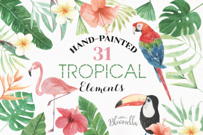 Tropcial Watercolor Flamingo Elements Flowers Hibiscus Exotic Flowers