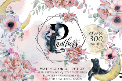 Panthers & Floral Watercolor set