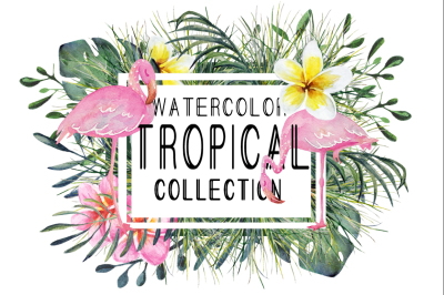 watercolor tropical set with flamingo