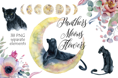 Panthers, Moons, Flowers watercolor clipart