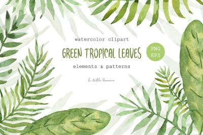 Green tropical leaves. Watercolor.