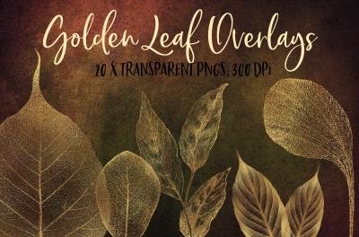 Golden leaf veins