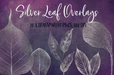 Silver leaf veins clipart