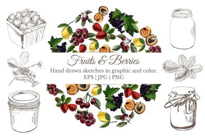 Bundle with sketches of berries and fruits in color and monochrom.