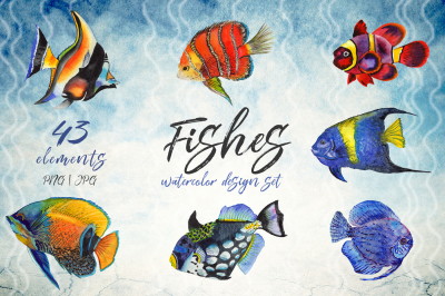 Sea fishes PNG watercolor set