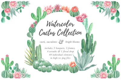 Watercolor Cactus and Succulents Collection