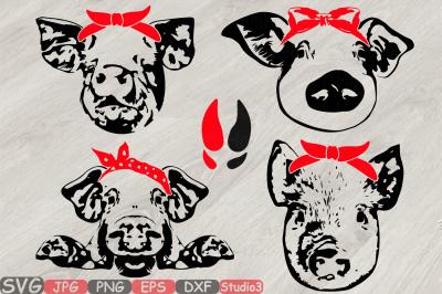Pig Head whit Bandana Silhouette SVG feet pigs western Farm 825S
