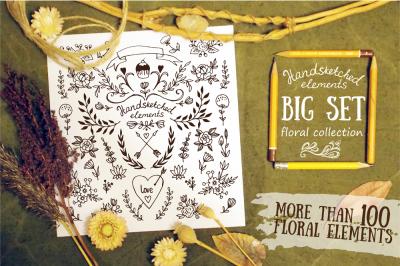 BIG SET of hand-drawn floral element