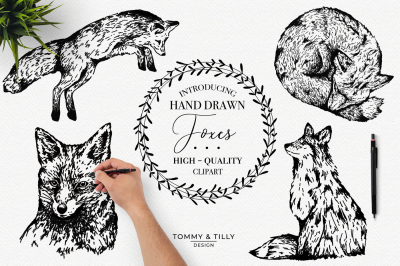 Hand Drawn Foxes Bundle - Clipart PNGs