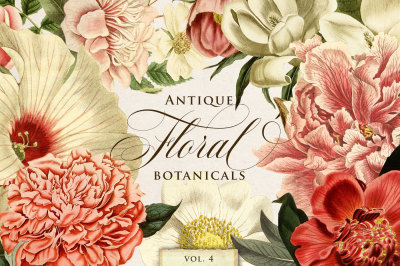 Antique Floral Botanical Graphics