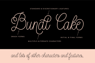 Bundt Cake Script Font