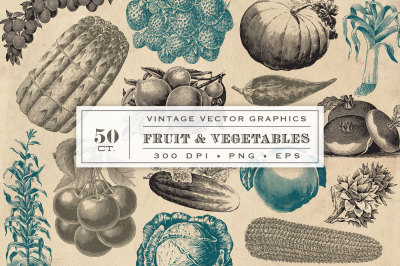 Vintage Fruit & Vegetable Vector Graphics
