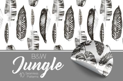 B&W Jungle - Seamless Patterns