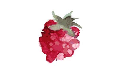 raspberries watercolor