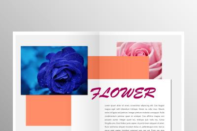 Elegant Comapny Brochure Template