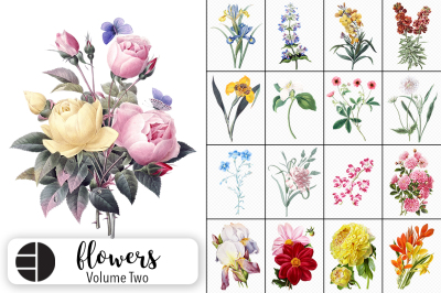 Vintage Watercolor Flowers Volume Two (20 Count)