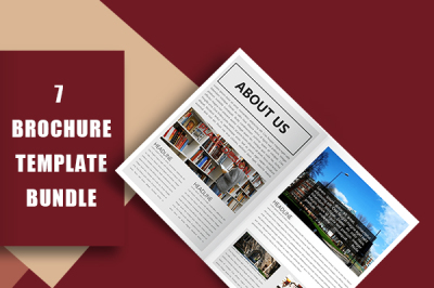 Elegant Company Brochure Template Bundle