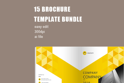 Yellow Geometry Company Brochure Template
