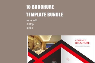 Professional Company Brochure Template Bundle