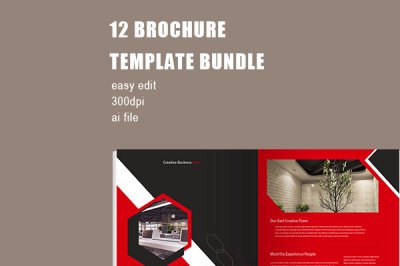 Red Professional Company Brochure Template Bundle