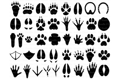 31 Animal Paws SVG, Paw Prints SVG.