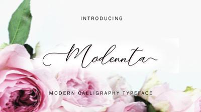Modennta Script | END OF YEAR PROMO