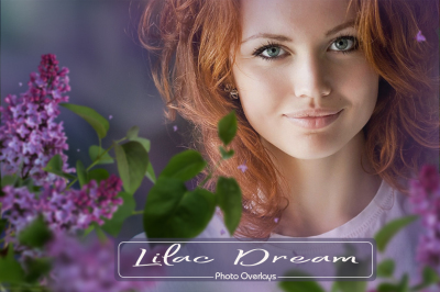Lilac Photo Overlays