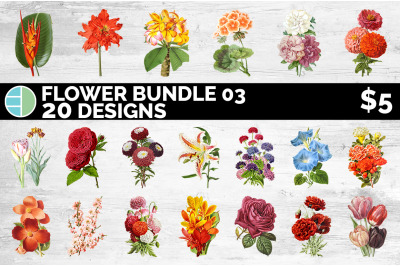 Flowers Clipart Bundle