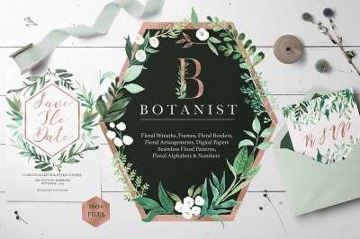 Botanist Watercolor Greenery Leaves