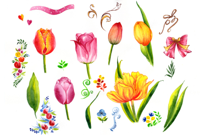 Summer colorful tulips PNG watercolor set