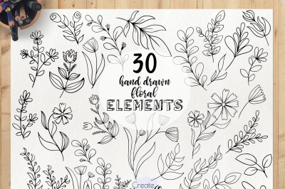Hand drawn floral elements - doodle leaves clipart, botanical clipart