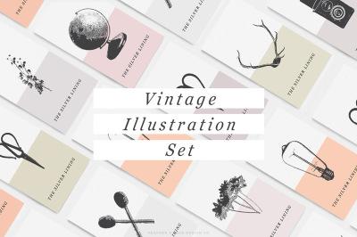 Vintage Illustration Graphic Set