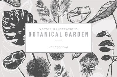Botanical Garden Illustration Graphics