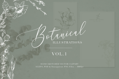 Botanical Illustrations Vol.1