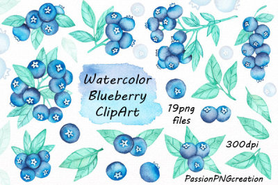 Watercolor blueberry clipart