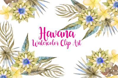 Havana - Watercolor floral clip art