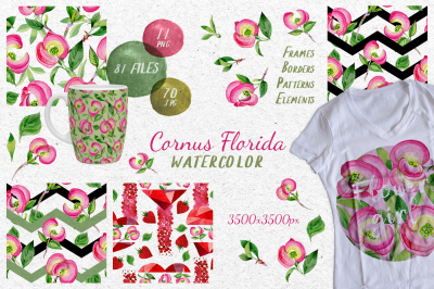 Cornus Florida flowers PNG watercolor set