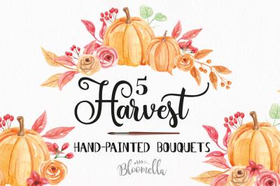 Watercolor Pumpkin Clipart Bouquets Harvest Autumn Fall