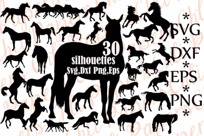 Horse Silhouette Svg, HORSE CLIPART, Horse Svg Bundle,Animal Silhouet