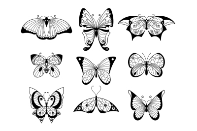 Butterfly On All Category Thehungryjpeg Com