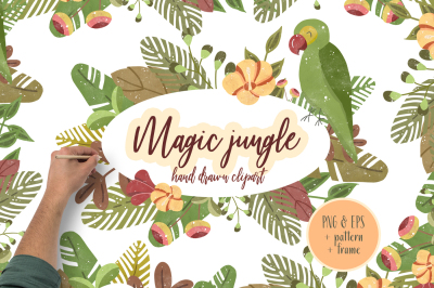 Magic Jungle Clipart Illustration Hand drawn Tropical